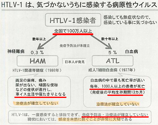 HTLV-1とは?