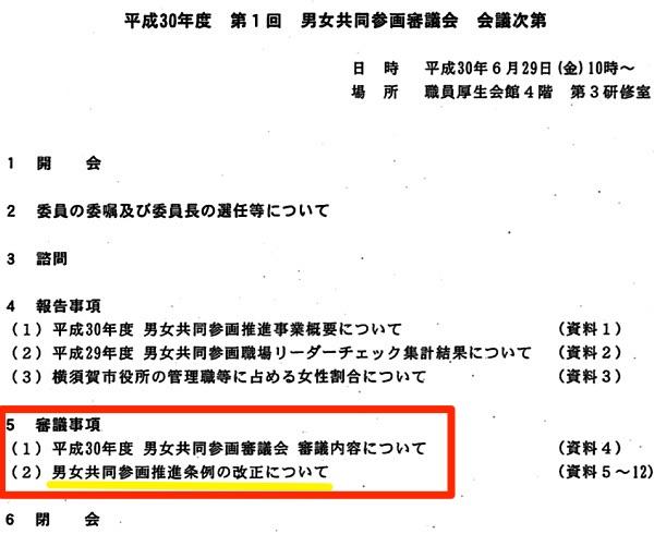 「男女共同参画審議会(第1回)議事次第」