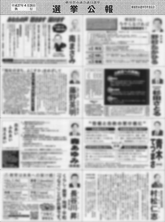 選挙管理委員会発行の「平成27年4月26日執行横須賀市議会議員選挙結果調」より抜粋