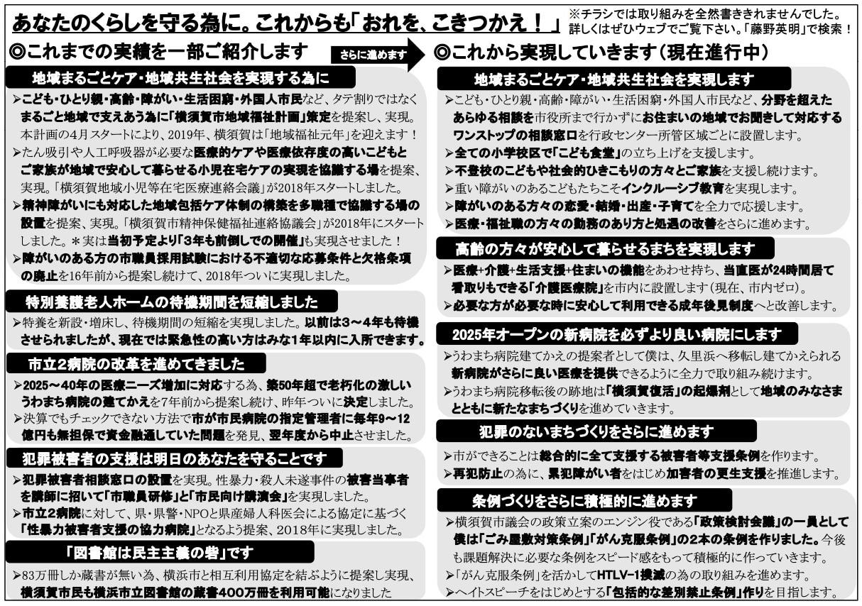 藤野英明の選挙チラシ3ページ目