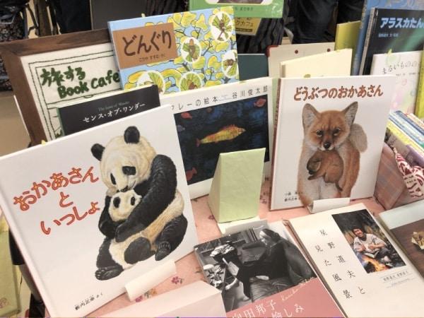 可愛い動物たちの本