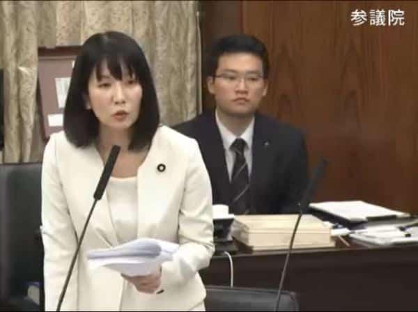 参議院外交防衛委員会で質問に立つ高瀬弘美議員
