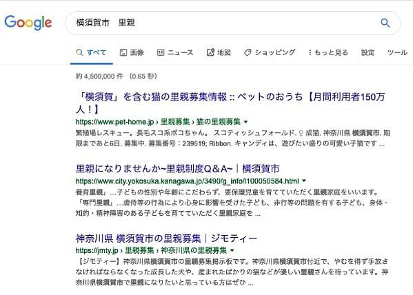 「横須賀市・里親」でグーグル検索すると表示されるのは