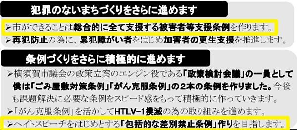 横須賀市議会議員選挙2019で配布したフジノのチラシより抜粋